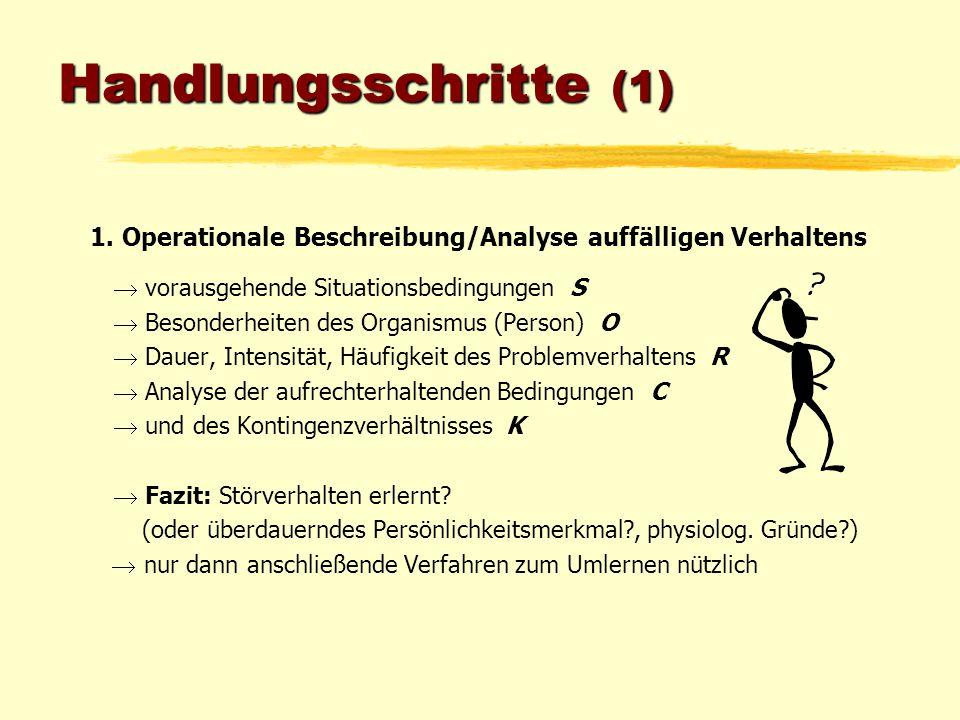 Handlungsschritte (1) 1. Operationale Beschreibung/Analyse auffälligen Verhaltens  vorausgehende Situationsbedingungen S  Besonderheiten des Organis