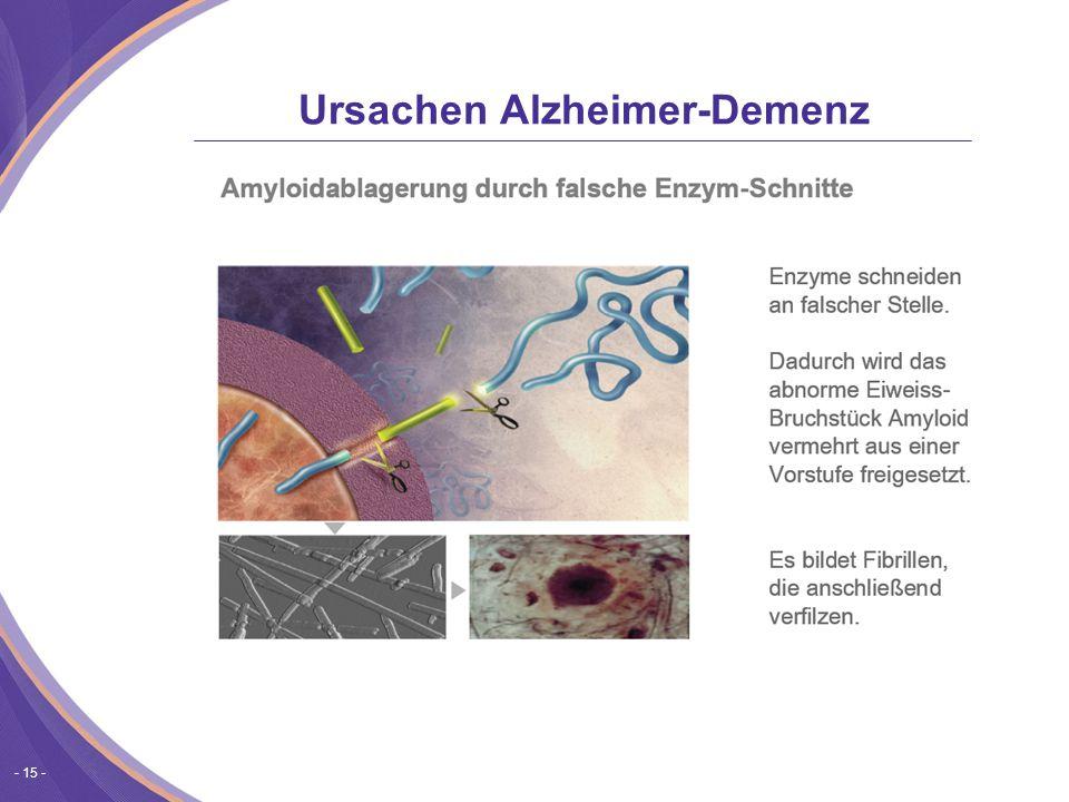 - 15 - Ursachen Alzheimer-Demenz