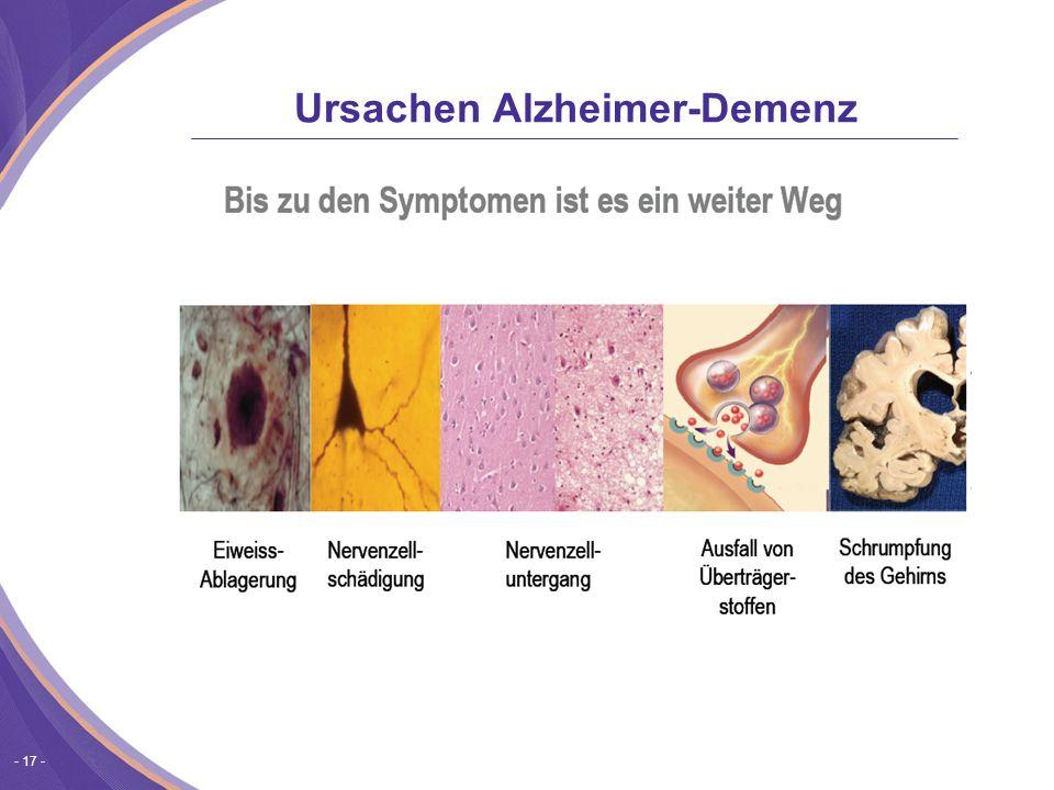 - 17 - Ursachen Alzheimer-Demenz