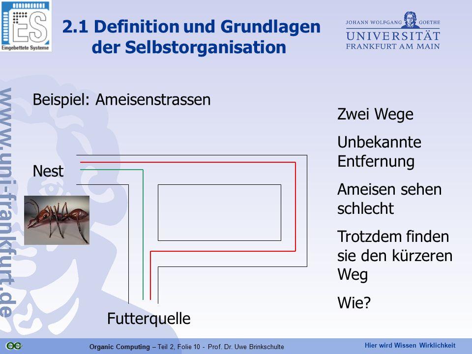 Hier wird Wissen Wirklichkeit Organic Computing – Teil 2, Folie 10 - Prof. Dr. Uwe Brinkschulte Beispiel: Ameisenstrassen 2.1 Definition und Grundlage