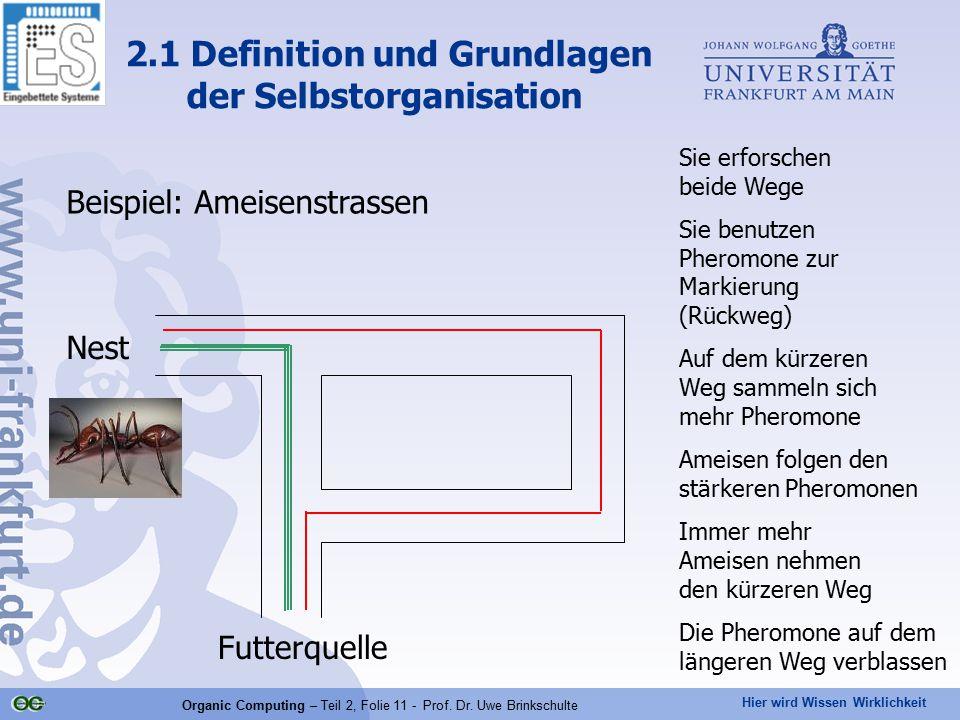 Hier wird Wissen Wirklichkeit Organic Computing – Teil 2, Folie 11 - Prof. Dr. Uwe Brinkschulte Beispiel: Ameisenstrassen 2.1 Definition und Grundlage