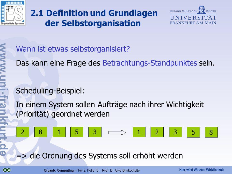 Hier wird Wissen Wirklichkeit Organic Computing – Teil 2, Folie 13 - Prof. Dr. Uwe Brinkschulte Wann ist etwas selbstorganisiert? Das kann eine Frage