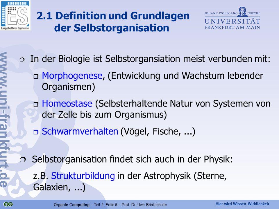 Hier wird Wissen Wirklichkeit Organic Computing – Teil 2, Folie 6 - Prof. Dr. Uwe Brinkschulte  In der Biologie ist Selbstorgansiation meist verbunde