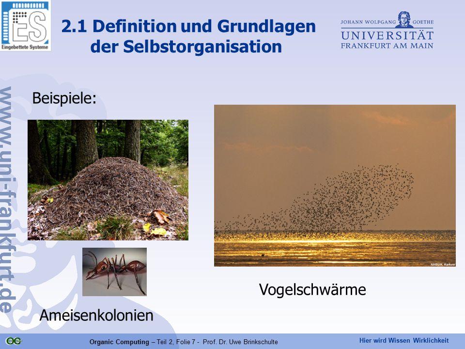 Hier wird Wissen Wirklichkeit Organic Computing – Teil 2, Folie 7 - Prof. Dr. Uwe Brinkschulte Beispiele: 2.1 Definition und Grundlagen der Selbstorga