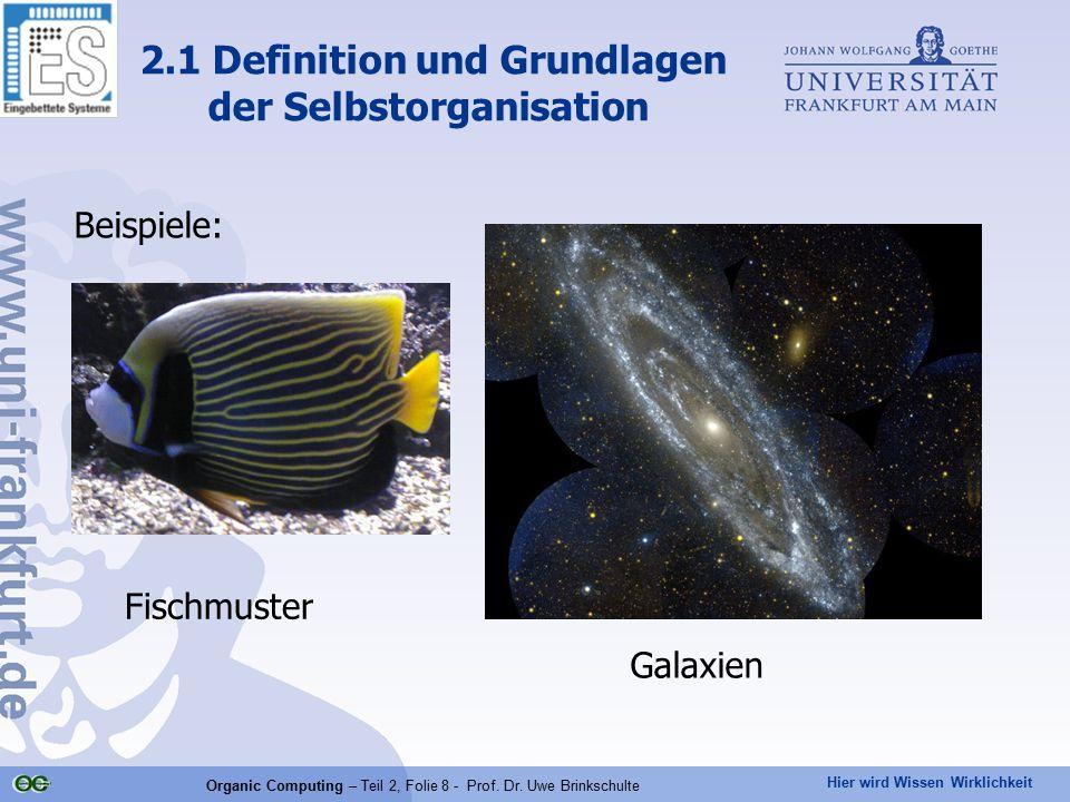 Hier wird Wissen Wirklichkeit Organic Computing – Teil 2, Folie 8 - Prof. Dr. Uwe Brinkschulte Beispiele: 2.1 Definition und Grundlagen der Selbstorga