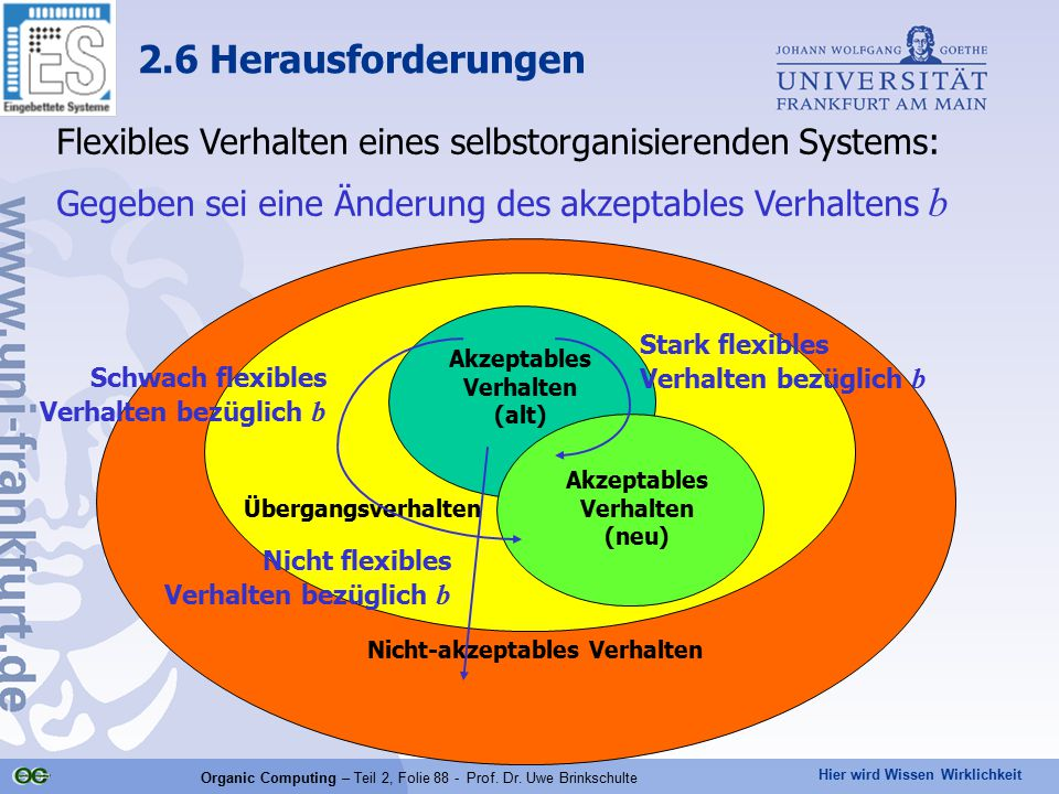 Hier wird Wissen Wirklichkeit Organic Computing – Teil 2, Folie 88 - Prof. Dr. Uwe Brinkschulte Flexibles Verhalten eines selbstorganisierenden System