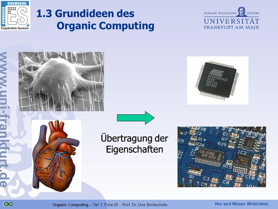 Hier wird Wissen Wirklichkeit Organic Computing – Teil 1, Folie 29 - Prof. Dr. Uwe Brinkschulte 1.3 Grundideen des Organic Computing Übertragung der E