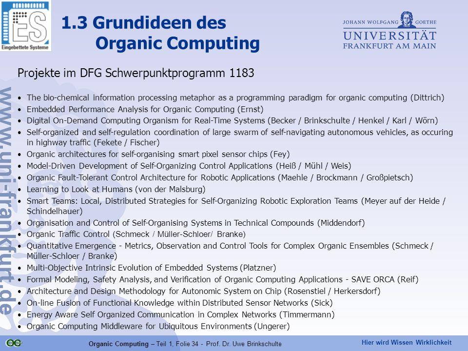 Hier wird Wissen Wirklichkeit Organic Computing – Teil 1, Folie 34 - Prof. Dr. Uwe Brinkschulte Projekte im DFG Schwerpunktprogramm 1183 The bio-chemi