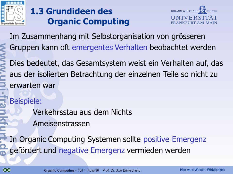 Hier wird Wissen Wirklichkeit Organic Computing – Teil 1, Folie 36 - Prof. Dr. Uwe Brinkschulte 1.3 Grundideen des Organic Computing Im Zusammenhang m