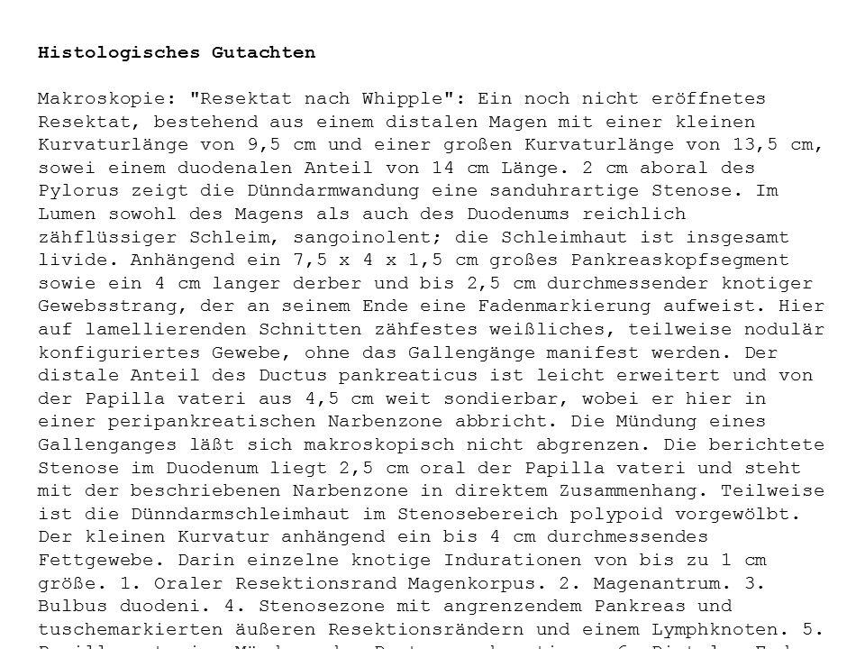Histologisches Gutachten Makroskopie: