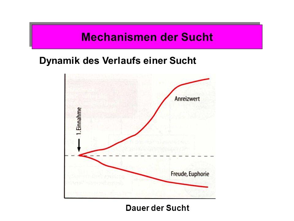 Mechanismen der Sucht Zusammenfassung: Lernprozesse und Sucht 1.