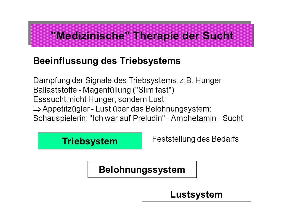 Lustsystem Anatomie des Lustsystems Wo im Gehirn wird die Lust selbst erzeugt .