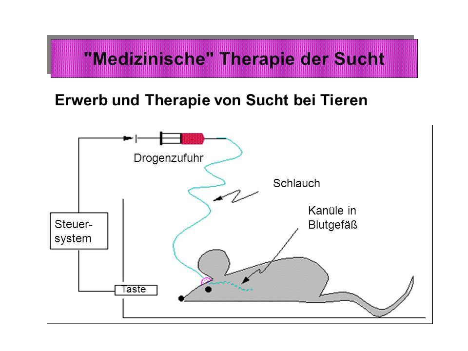Triebsystem Belohnungssystem Lustsystem Feststellung des Bedarfs Medizinische Therapie der Sucht Beeinflussung des Triebsystems Dämpfung der Signale des Triebsystems: z.B.