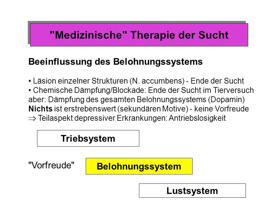 Drogenzufuhr Schlauch Kanüle in Blutgefäß Taste Steuer- system Medizinische Therapie der Sucht Erwerb und Therapie von Sucht bei Tieren