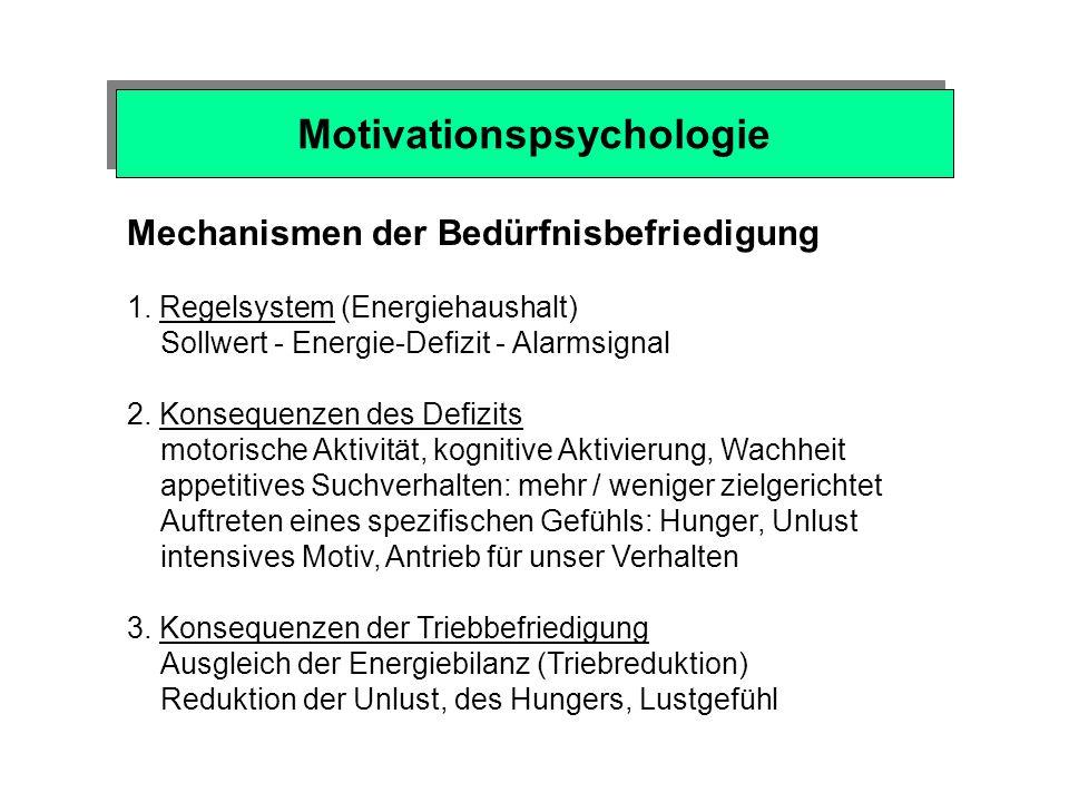 Motivationspsychologie Biologischer Sinn natürlicher Motive / Triebe Unmittelbares Überleben des einzelnen Individuums Nahrungsaufnahme, Flüssigkeitszufuhr, Schlaf Langfristige Wahrscheinlichkeit zu überleben Spieltrieb, Bindungsbedürfnis, Sozialkontakt, Neugierde, Explorationsbedürfnis Überleben der ganzen Art Sexualität und elterliches Pflegebedürfnis, Sozialkontakt Natürliche Anreize (incentives) - Objekte unserer Begierde Nahrung, Wasser, Sozial- / Sexual-Partner, Körperkontakt