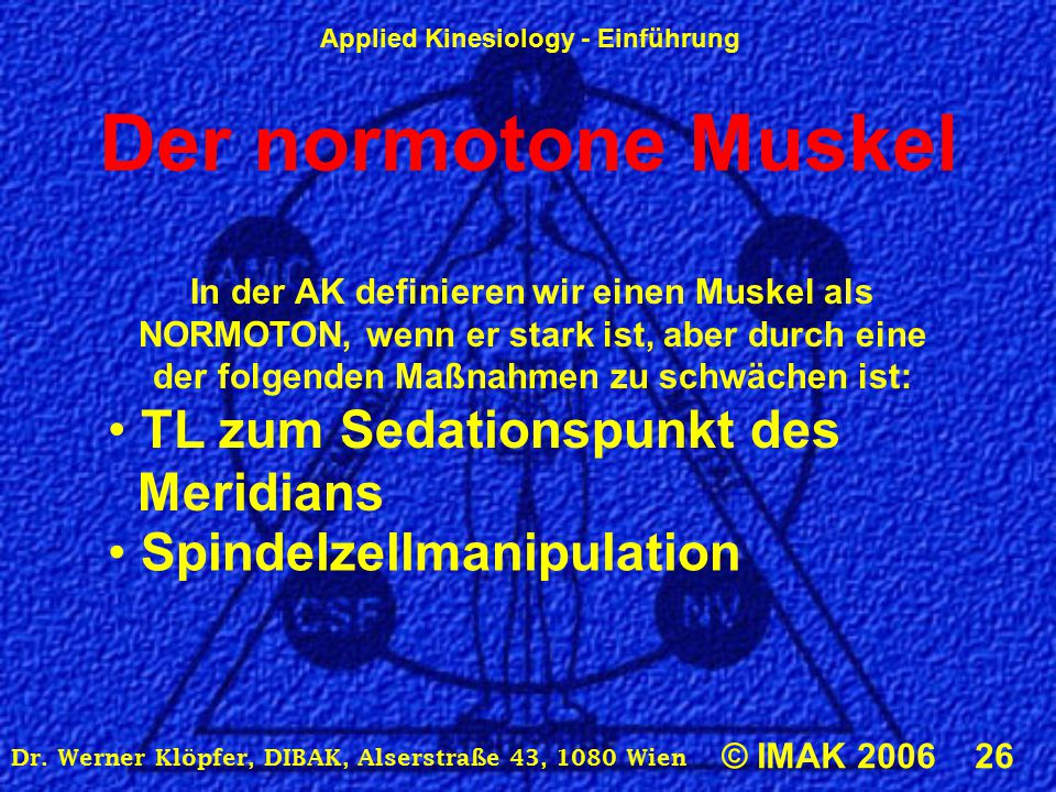 Applied Kinesiology - Einführung © IMAK 2006 26 Dr. Werner Klöpfer, DIBAK, Alserstraße 43, 1080 Wien Der normotone Muskel In der AK definieren wir ein