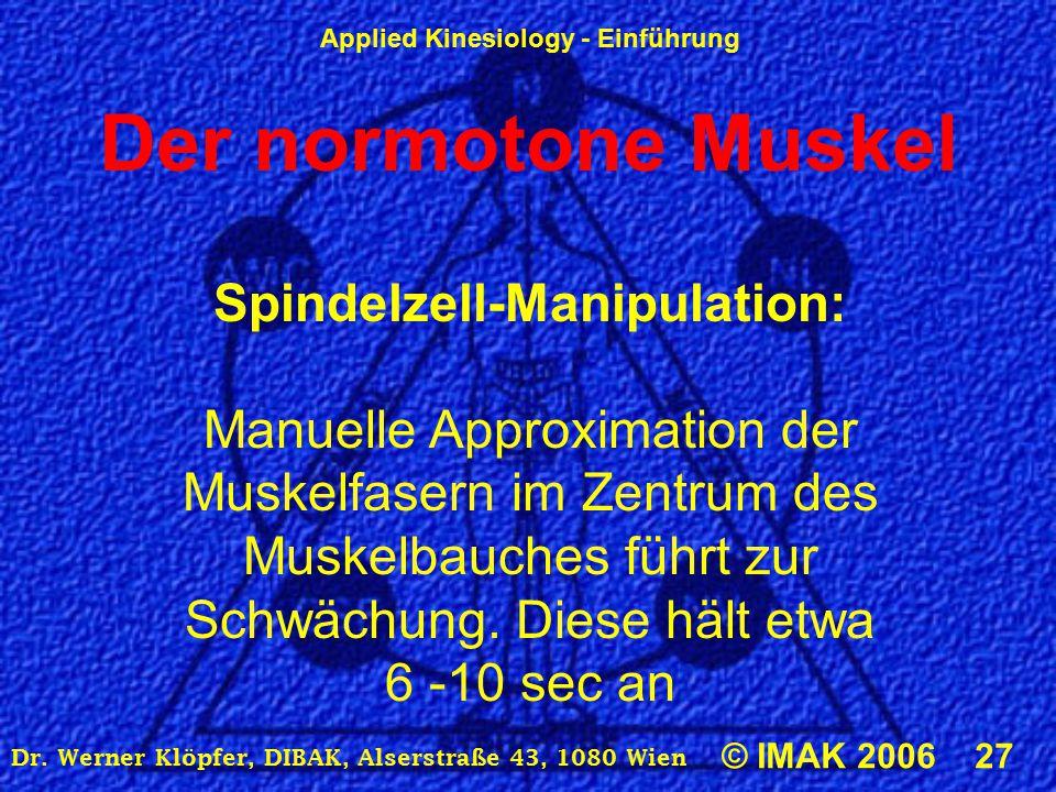 Applied Kinesiology - Einführung © IMAK 2006 27 Dr. Werner Klöpfer, DIBAK, Alserstraße 43, 1080 Wien Der normotone Muskel Spindelzell-Manipulation: Ma
