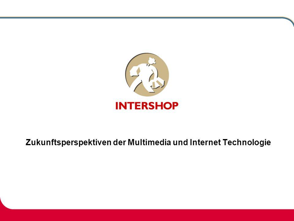 Zukunftsperspektiven der Multimedia und Internet Technologie