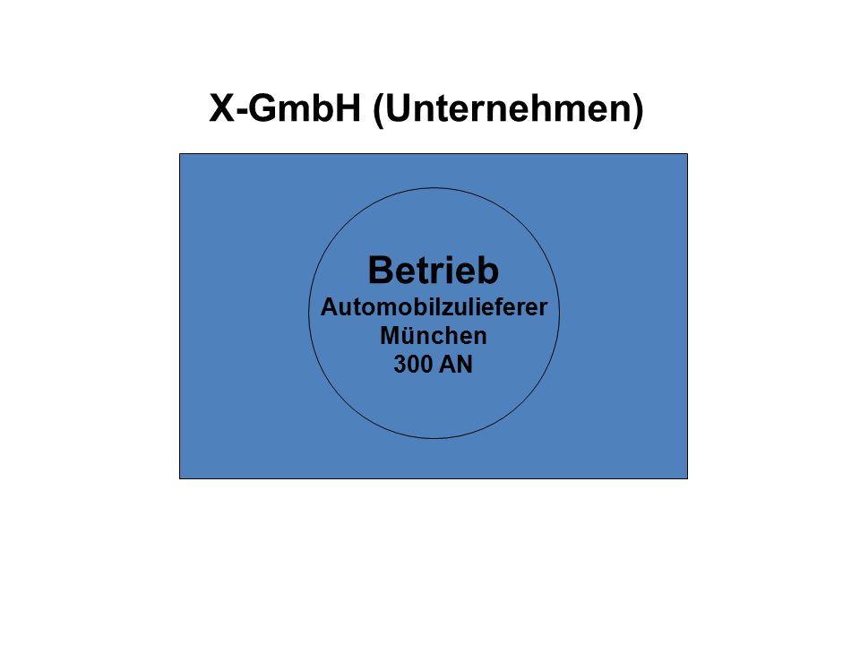 X-GmbH (Unternehmen) Betrieb Automobilzulieferer München 300 AN