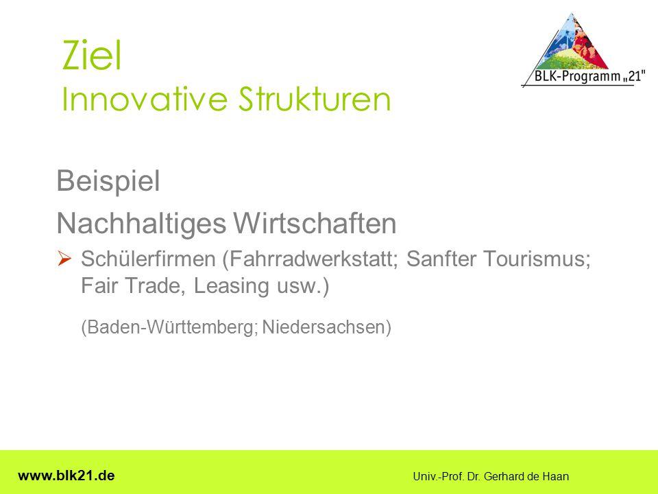 www.blk21.de Univ.-Prof. Dr. Gerhard de Haan Ziel Innovative Strukturen Beispiel Nachhaltiges Wirtschaften  Schülerfirmen (Fahrradwerkstatt; Sanfter