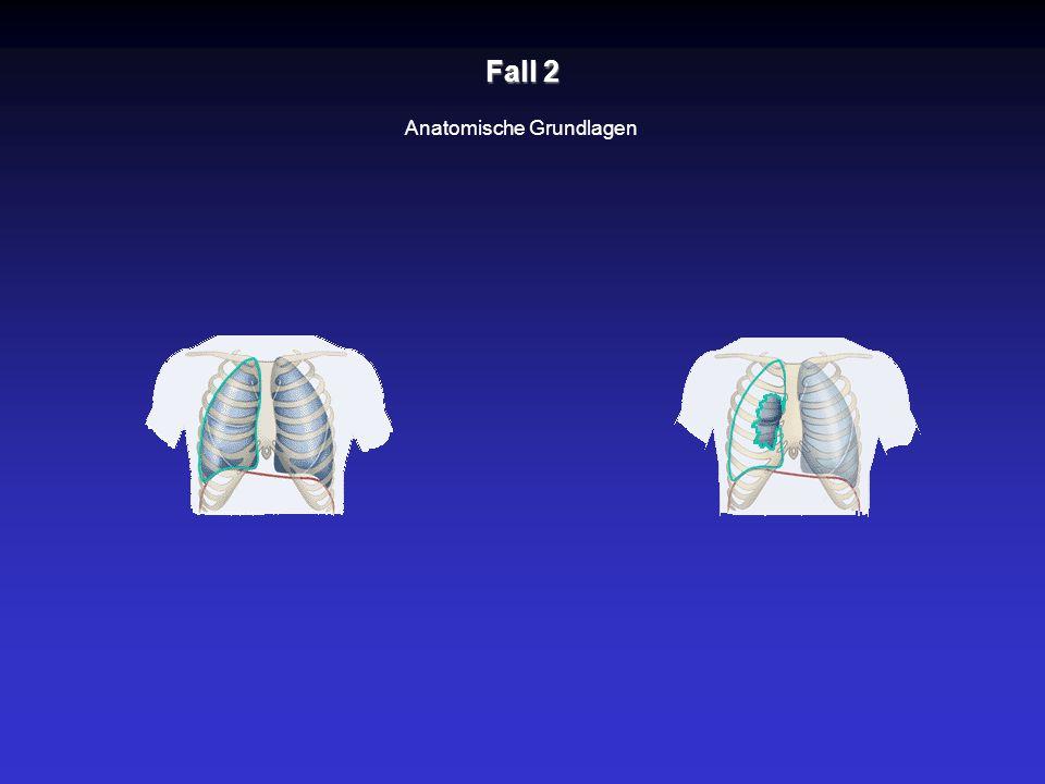 Fall 2 Anatomische Grundlagen