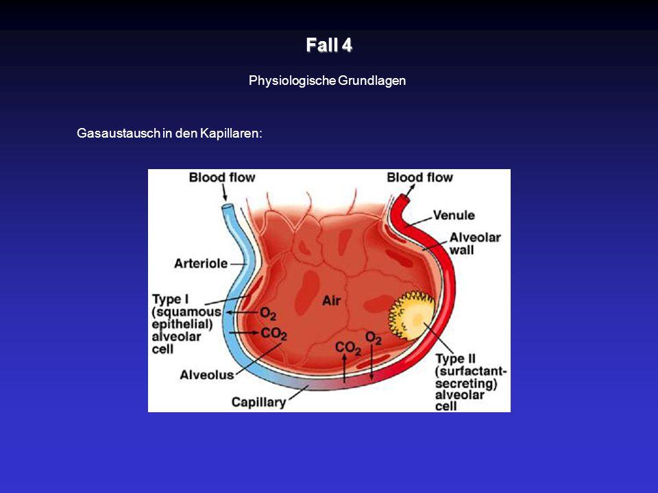 Fall 4 Physiologische Grundlagen Gasaustausch in den Kapillaren: