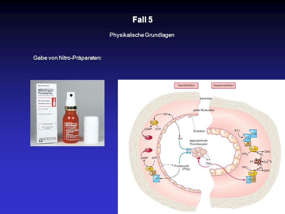 Fall 5 Physikalische Grundlagen Gabe von Nitro-Präparaten: