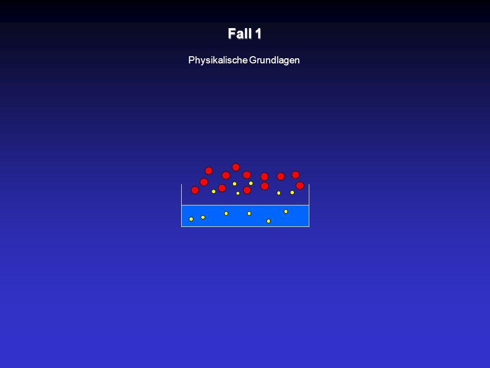 Fall 1 Physikalische Grundlagen