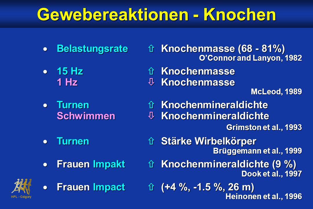  Belastungsrate  Knochenmasse (68 - 81%) O'Connor and Lanyon, 1982  15 Hz  Knochenmasse 1 Hz  Knochenmasse McLeod, 1989  Turnen  Knochenmineraldichte Schwimmen  Knochenmineraldichte Grimston et al., 1993  Turnen  Stärke Wirbelkörper Brüggemann et al., 1999  Frauen Impakt  Knochenmineraldichte (9 %) Dook et al., 1997  Frauen Impact  (+4 %, -1.5 %, 26 m) Heinonen et al., 1996 Gewebereaktionen - Knochen