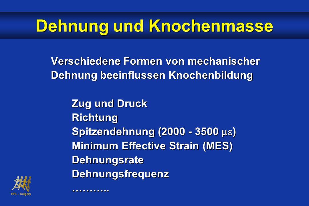Dehnung und Knochenmasse Verschiedene Formen von mechanischer Dehnung beeinflussen Knochenbildung Zug und Druck Richtung Spitzendehnung (2000 - 3500  ) Minimum Effective Strain (MES) DehnungsrateDehnungsfrequenz………..