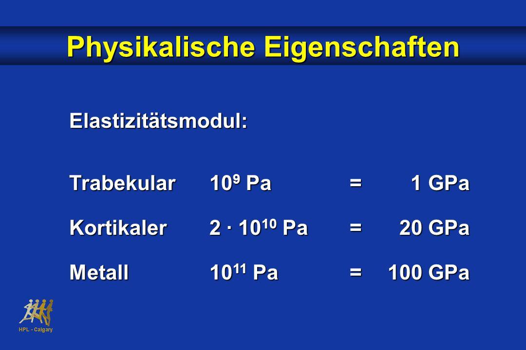 Physikalische Eigenschaften Elastizitätsmodul: Trabekular10 9 Pa= 1 GPa Kortikaler2 · 10 10 Pa= 20 GPa Metall10 11 Pa=100 GPa