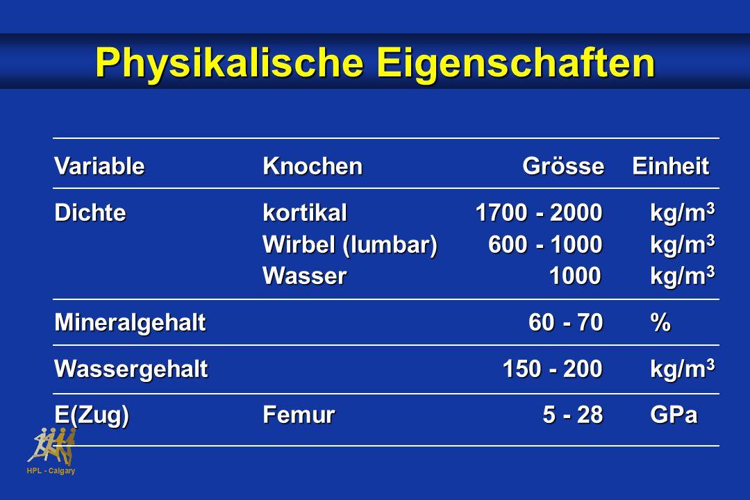 VariableKnochen Grösse Einheit Dichtekortikal 1700 - 2000kg/m 3 Wirbel (lumbar) 600 - 1000kg/m 3 Wasser 1000kg/m 3 Mineralgehalt 60 - 70% Wassergehalt 150 - 200kg/m 3 E(Zug)Femur 5 - 28GPa Physikalische Eigenschaften