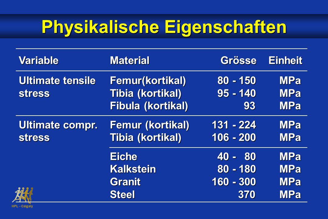 VariableMaterial Grösse Einheit Ultimate tensile Femur(kortikal) 80 - 150MPa stressTibia (kortikal) 95 - 140MPa Fibula (kortikal) 93MPa Ultimate compr.Femur (kortikal) 131 - 224MPa stressTibia (kortikal) 106 - 200MPa Eiche 40 - 80MPa Kalkstein 80 - 180MPa Granit 160 - 300MPa Steel 370MPa Physikalische Eigenschaften