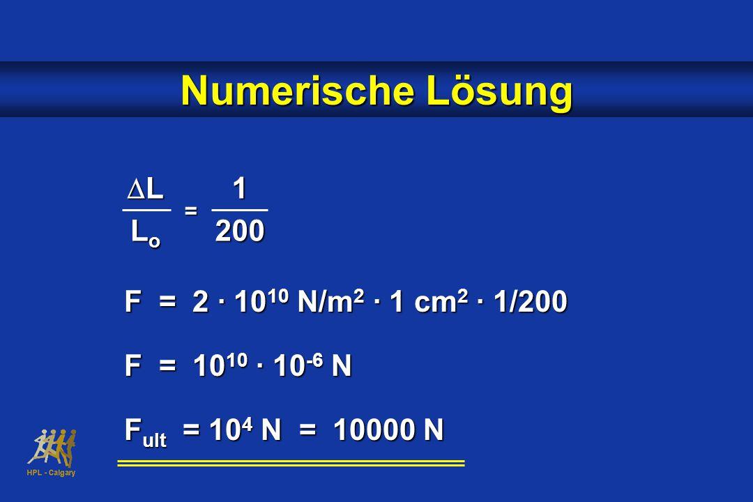 LLLoLoLLLoLo1200 = F = 2 · 10 10 N/m 2 · 1 cm 2 · 1/200 F = 10 10 · 10 -6 N F ult = 10 4 N = 10000 N Numerische Lösung