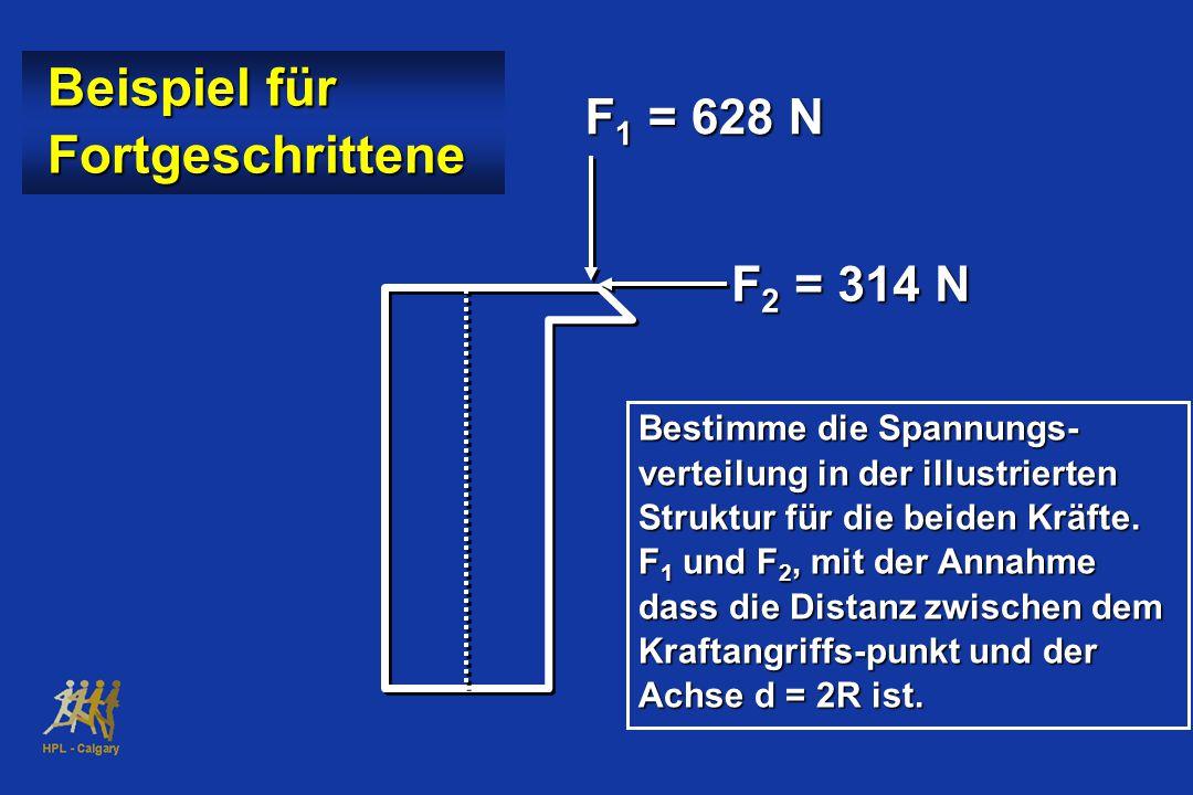 F 1 = 628 N F 2 = 314 N Beispiel für Beispiel für Fortgeschrittene Fortgeschrittene Bestimme die Spannungs- verteilung in der illustrierten Struktur für die beiden Kräfte.