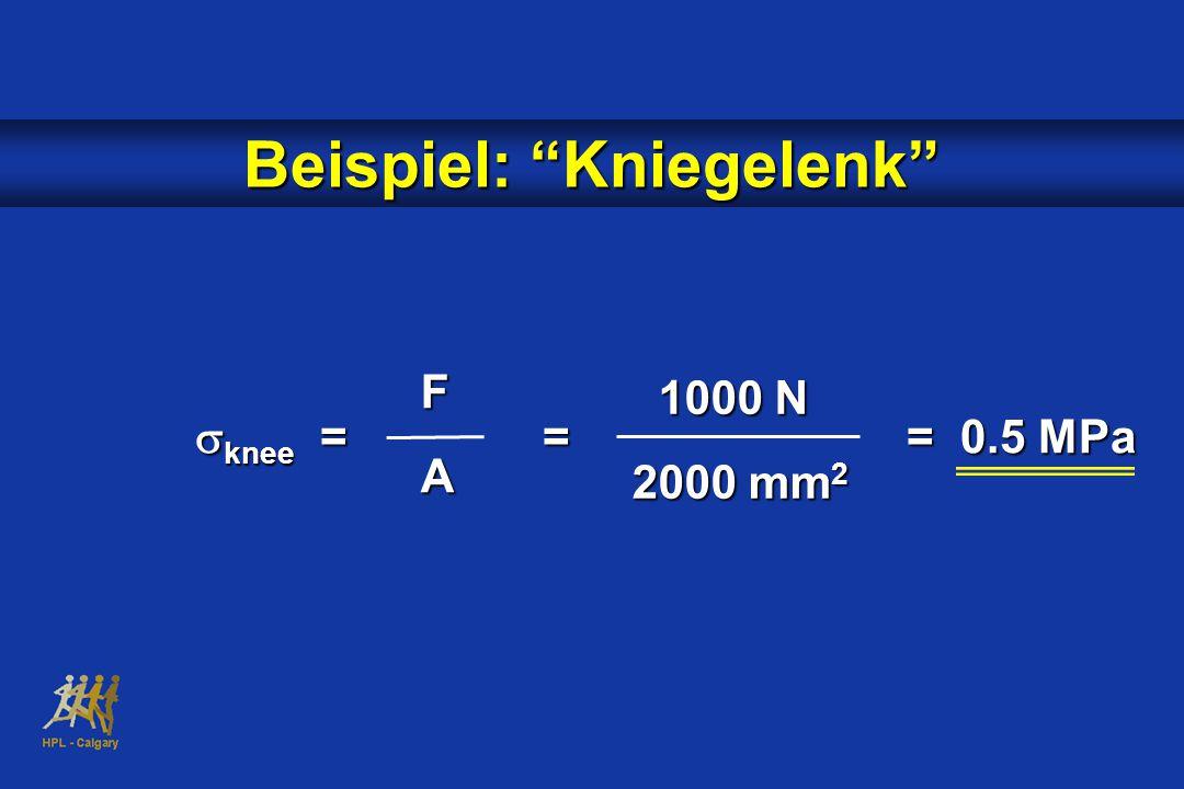  knee = = = 0.5 MPa 1000 N 1000 N 2000 mm 2 FA Beispiel: Kniegelenk