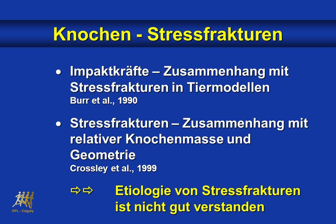  Impaktkräfte – Zusammenhang mit Stressfrakturen in Tiermodellen Burr et al., 1990  Stressfrakturen – Zusammenhang mit relativer Knochenmasse und Geometrie Crossley et al., 1999  Etiologie von Stressfrakturen ist nicht gut verstanden Knochen - Stressfrakturen