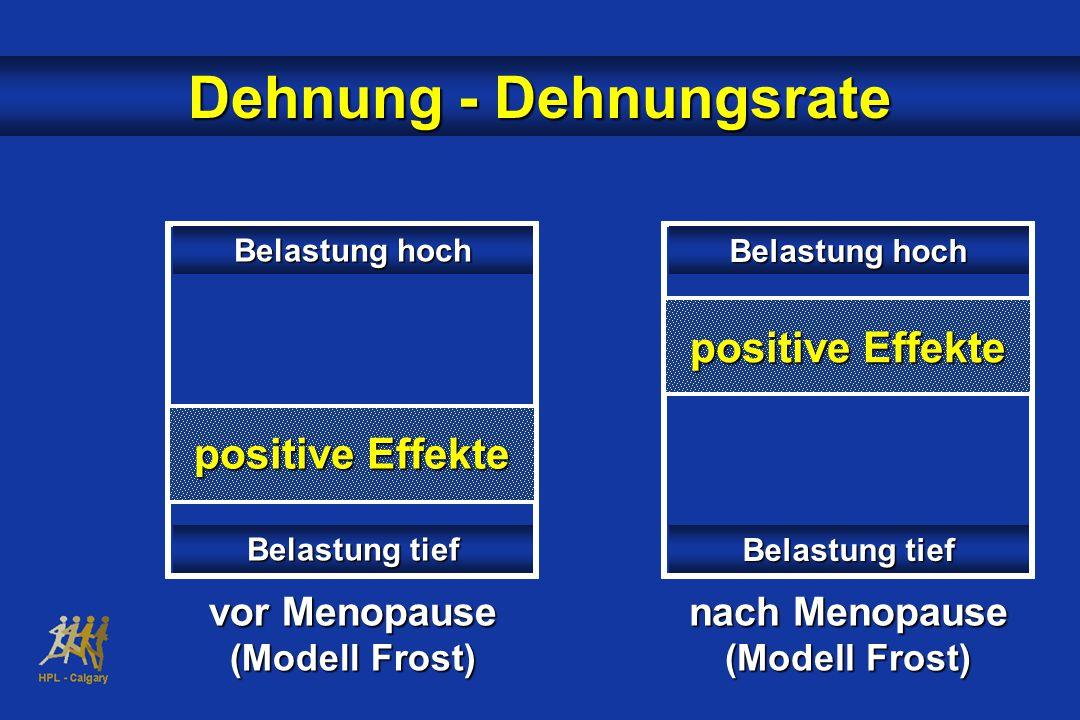 Dehnung - Dehnungsrate positive Effekte Belastung tief vor Menopause (Modell Frost) nach Menopause (Modell Frost) Belastung hoch Belastung tief Belastung hoch