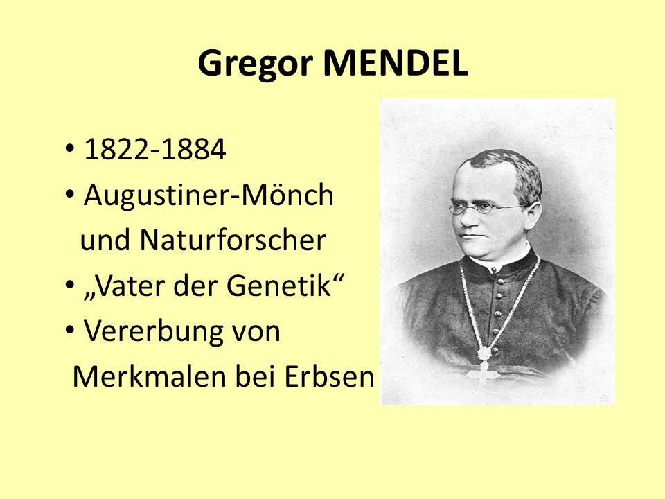 """Gregor MENDEL 1822-1884 Augustiner-Mönch und Naturforscher """"Vater der Genetik"""" Vererbung von Merkmalen bei Erbsen"""