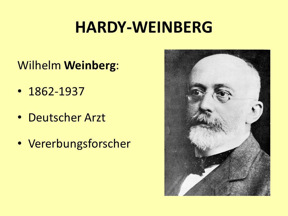 HARDY-WEINBERG Wilhelm Weinberg: 1862-1937 Deutscher Arzt Vererbungsforscher