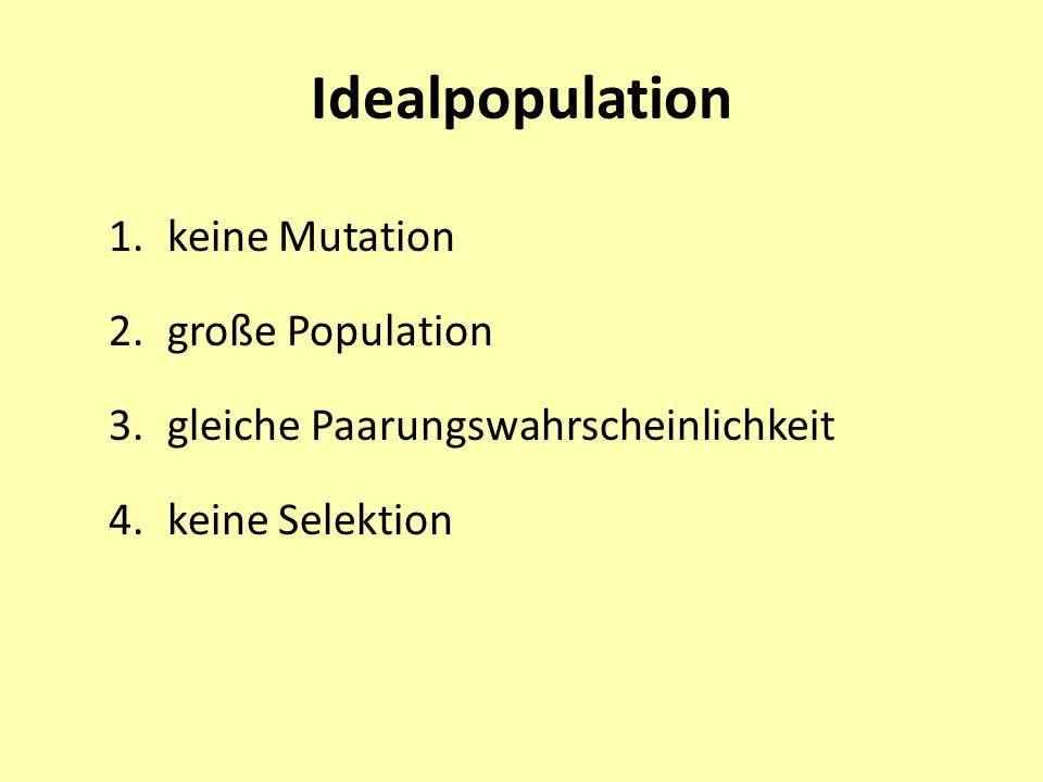 Idealpopulation 1.keine Mutation 2.große Population 3.gleiche Paarungswahrscheinlichkeit 4.keine Selektion