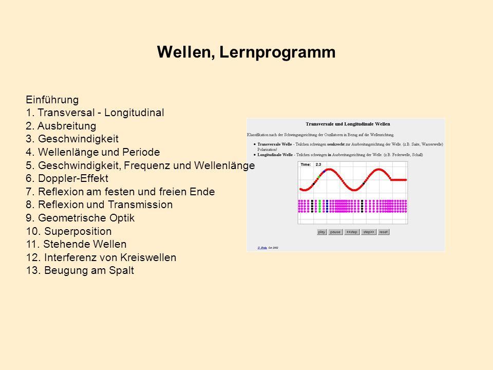 Wellen, Lernprogramm Einführung 1. Transversal - Longitudinal 2. Ausbreitung 3. Geschwindigkeit 4. Wellenlänge und Periode 5. Geschwindigkeit, Frequen