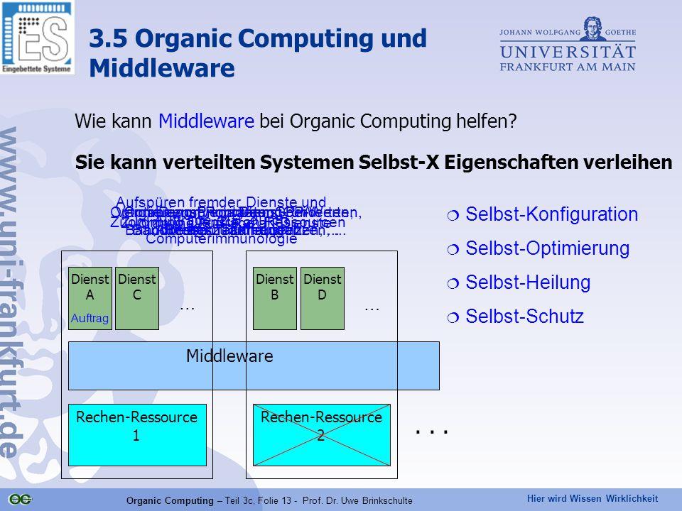 Hier wird Wissen Wirklichkeit Organic Computing – Teil 3c, Folie 13 - Prof. Dr. Uwe Brinkschulte Wie kann Middleware bei Organic Computing helfen? Sie