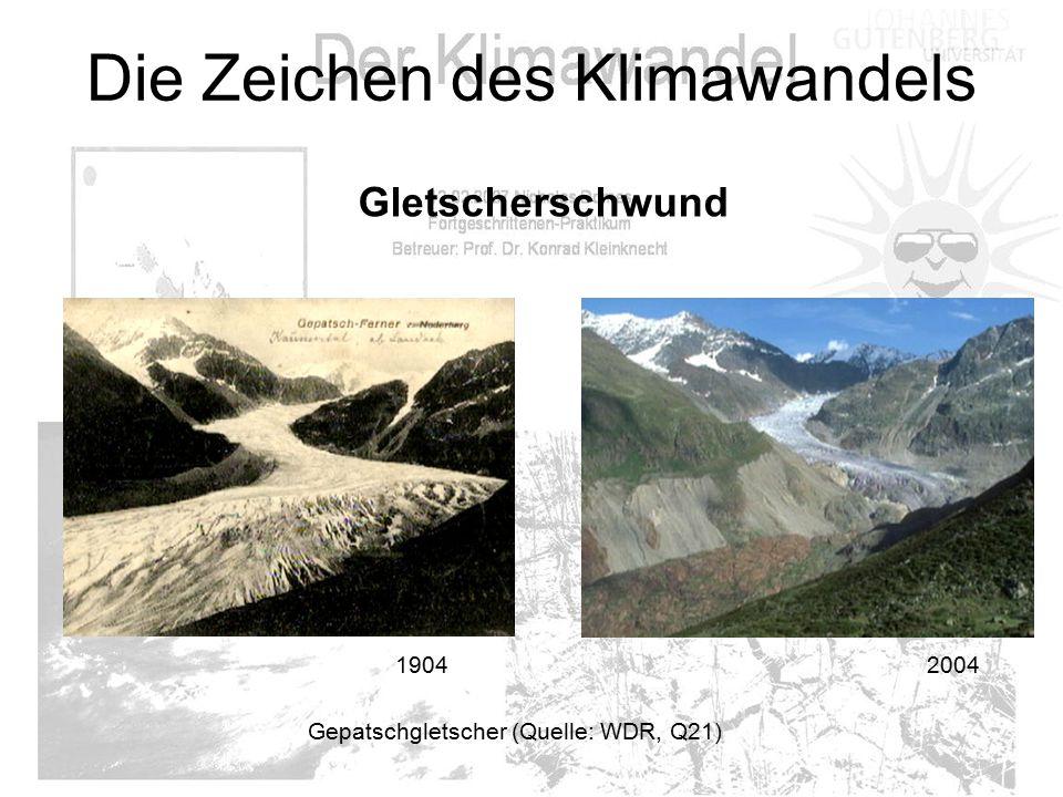 Die Zeichen des Klimawandels 1904 2004 Gletscherschwund Gepatschgletscher (Quelle: WDR, Q21)