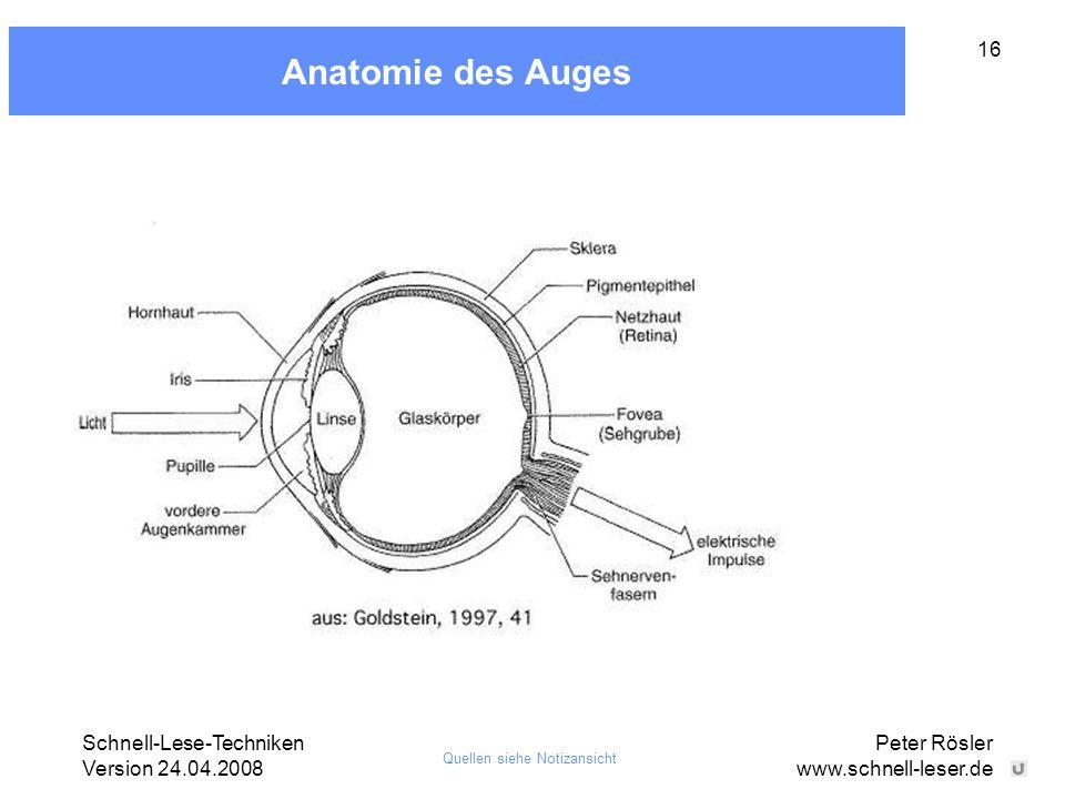 Schnell-Lese-Techniken Version 24.04.2008 Peter Rösler www.schnell-leser.de 16 Anatomie des Auges Quellen siehe Notizansicht