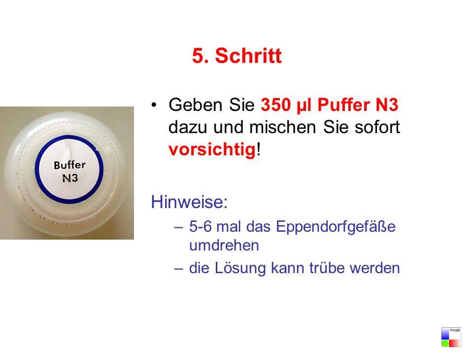 5. Schritt Geben Sie 350 µl Puffer N3 dazu und mischen Sie sofort vorsichtig! Hinweise: –5-6 mal das Eppendorfgefäße umdrehen –die Lösung kann trübe w