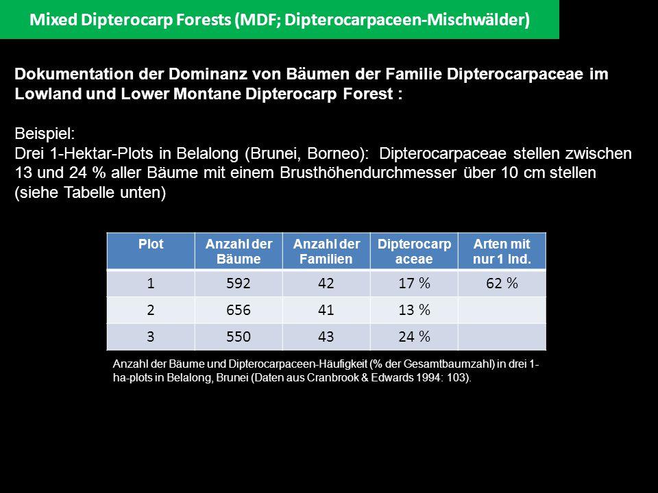 Mixed Dipterocarp Forests (MDF; Dipterocarpaceen-Mischwälder) Dokumentation der Dominanz von Bäumen der Familie Dipterocarpaceae im Lowland und Lower
