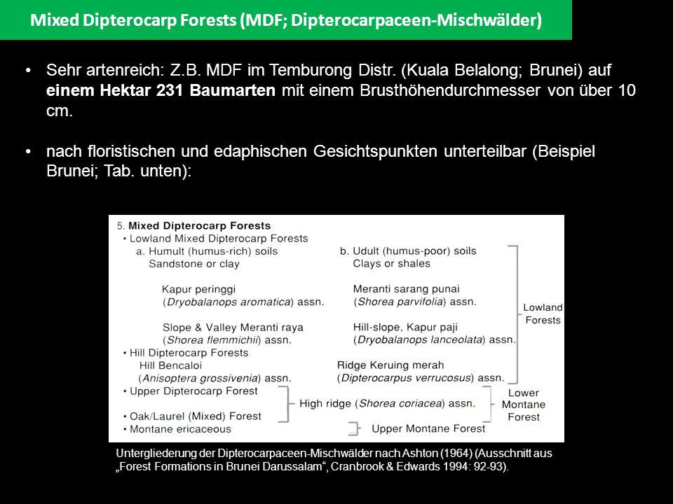 Mixed Dipterocarp Forests (MDF; Dipterocarpaceen-Mischwälder) Lowland Mixed Dipterocarp Forests Dipterocarpaceen-Mischwälder sind die artenreichsten und ökologisch komplexesten Regenwälder Südostasiens, die in Höhenlagen von 0 bis etwa 750 m zu finden sind.