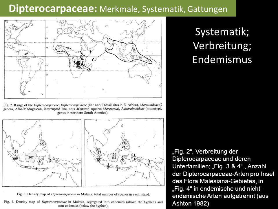 """Systematik; Verbreitung; Endemismus """"Fig. 2"""", Verbreitung der Dipterocarpaceae und deren Unterfamilien; """"Fig. 3 & 4"""", Anzahl der Dipterocarpaceae-Art"""