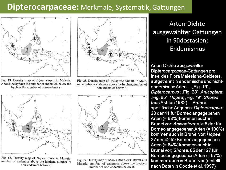 Arten-Dichte ausgewählter Gattungen in Südostasien; Endemismus Arten-Dichte ausgewählter Dipterocarpaceae-Gattungen pro Insel des Flora Malesiana-Gebi